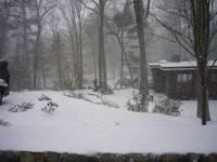 Highlight for album: February in Massachusetts